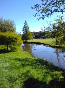 Golden acre park, Leeds