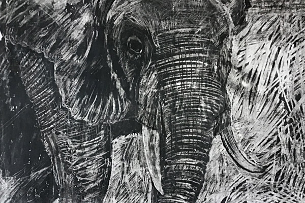Elephant for resources page